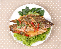 Curry-fried Tilapia fish with spicy topping. Stock Images