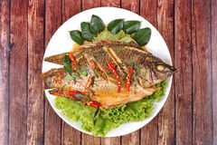 Curry-fried Tilapia fish with spicy topping. Thai cuisine, Curry-fried Tilapia fish with spicy topping on white dish royalty free stock photography