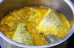 Curry giallo Immagine Stock Libera da Diritti
