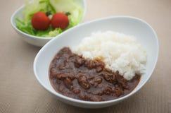 Curry giapponese familiare Immagine Stock Libera da Diritti