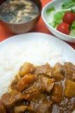 Curry giapponese familiare Fotografia Stock Libera da Diritti