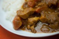 Curry giapponese familiare Fotografie Stock Libere da Diritti