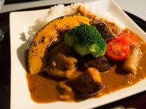 Curry giapponese, stile di Kyoto Immagine Stock