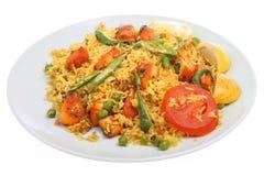 Curry indiano di Tikka Biriani del pollo fotografia stock