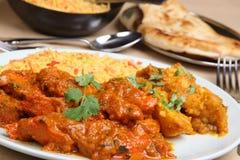Curry indiano di Vindaloo del pollo Fotografia Stock Libera da Diritti