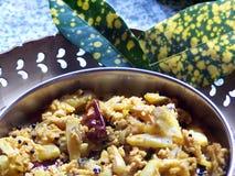 Curry indio Imagen de archivo
