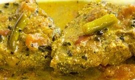 Curry indio de los pescados Imagen de archivo