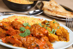 Curry indio de Vindaloo del pollo Foto de archivo libre de regalías