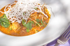 Curry indio del pollo Imagen de archivo