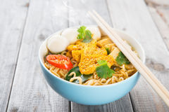 Curry instant noodles soup Stock Photography