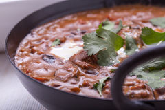 Curry in Karachi dish. Chicken masala curry in Karachi with coriander and cream close up Royalty Free Stock Photo