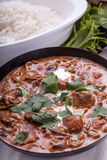 Curry in Karachi dish. Chicken masala curry in Karachi with coriander and rice royalty free stock images