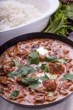 Curry in Karatschi-Teller Lizenzfreie Stockbilder