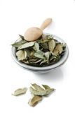 Curry Leaves Stock Photos