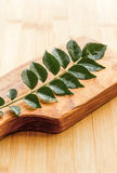 Curry Leaves. /  Murraya koenigii  on wooden base. An important herb and ingredient for South Indian Cooking.  Image of  /  sweet neem leaves was shot in Royalty Free Stock Photo