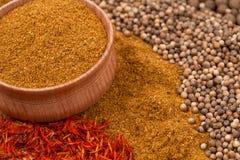 Curry med annan kryddor Arkivbilder
