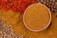 Curry med annan kryddor Royaltyfri Fotografi