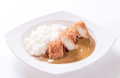 Curry med rice Arkivbild