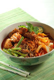 Curry Noodle Royalty Free Stock Photography