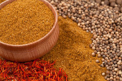 Curry with other spices Stock Images