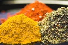 Curry, peperoncino rosso, erbe Fotografia Stock