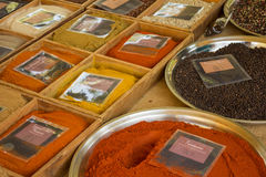 Curry peppar, garammasala Fotografering för Bildbyråer