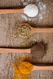 Curry, pepper, oregano and cooking salt Stock Photography