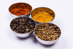 Curry, Pepper, Paprika And Coriander - White Back Stock Photos