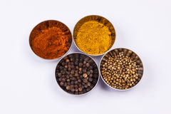 Curry, pepper,  paprika and coriander - white back Stock Images