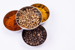 Curry, pepper,  paprika and coriander - white back Royalty Free Stock Photography