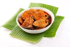 Curry picante de los pescados de la cocina de SKerala Foto de archivo libre de regalías