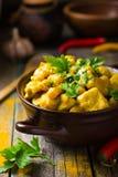 Curry picante del pollo y de los garbanzos Foto de archivo libre de regalías