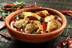Curry picante delicioso de los pescados foto de archivo