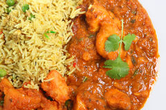 Curry Plate Royalty Free Stock Photography