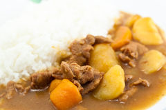 Curry pork with rice Royalty Free Stock Images