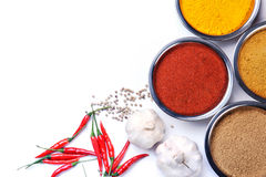 Curry powder with chili ,garlic,peper ingredients Stock Photography
