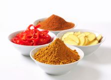 Curry powder, ground cinnamon, sliced ginger root and red pepper Stock Images
