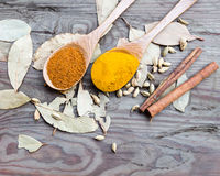 Curry powder in spoons laid out in spoons on a wooden table Royalty Free Stock Photography
