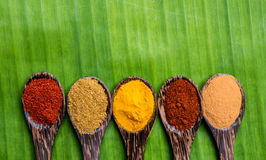 Curry powders Royalty Free Stock Photography