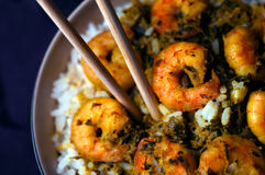 Curry Prawns with rice Royalty Free Stock Photos