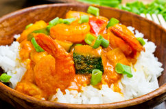 Curry with prawns, vegetables and chives Stock Image