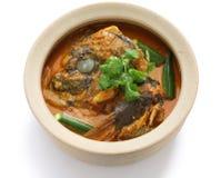 Curry principal de los pescados Foto de archivo libre de regalías