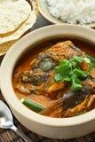 Curry principal de los pescados Imágenes de archivo libres de regalías