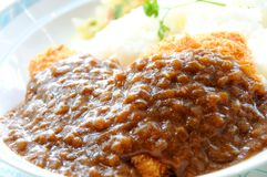Curry rice Royalty Free Stock Photos