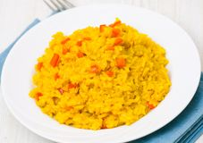 Curry rice Stock Photography