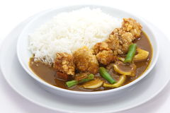 Curry and rice Royalty Free Stock Photography