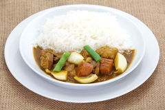 Curry and rice Royalty Free Stock Image