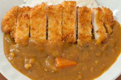 Curry rice with pork cutlet Stock Images