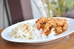 Curry on Rice and tempura. Curry is a generic term primarily employed in Western culture to denote a wide variety of dishes originating in Indian, Pakistani stock image