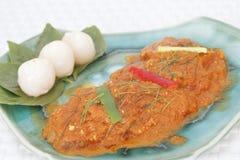 Curry rojo con el pato de carne asada fotografía de archivo libre de regalías